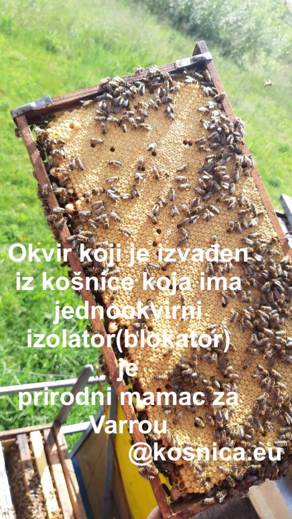 Jednookvirni blokator matice je idealan za početne pčelare jer na taj način upotpunosti imaju kontrolu nad pčelinjom zajednicom.