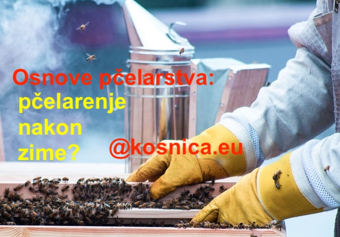 Pčelarenje po mjesecima-osnove pčelarstva-zimsko proljetno pčelarenje